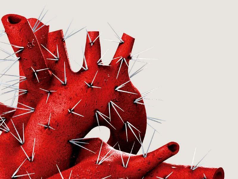 corazón cactus
