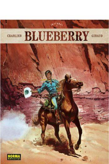 Blueberry integral #1